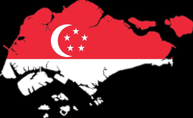 salvar el medio ambiente singapur