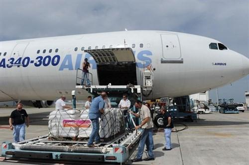 Avión de carga - medios de transporte del comercio internacional